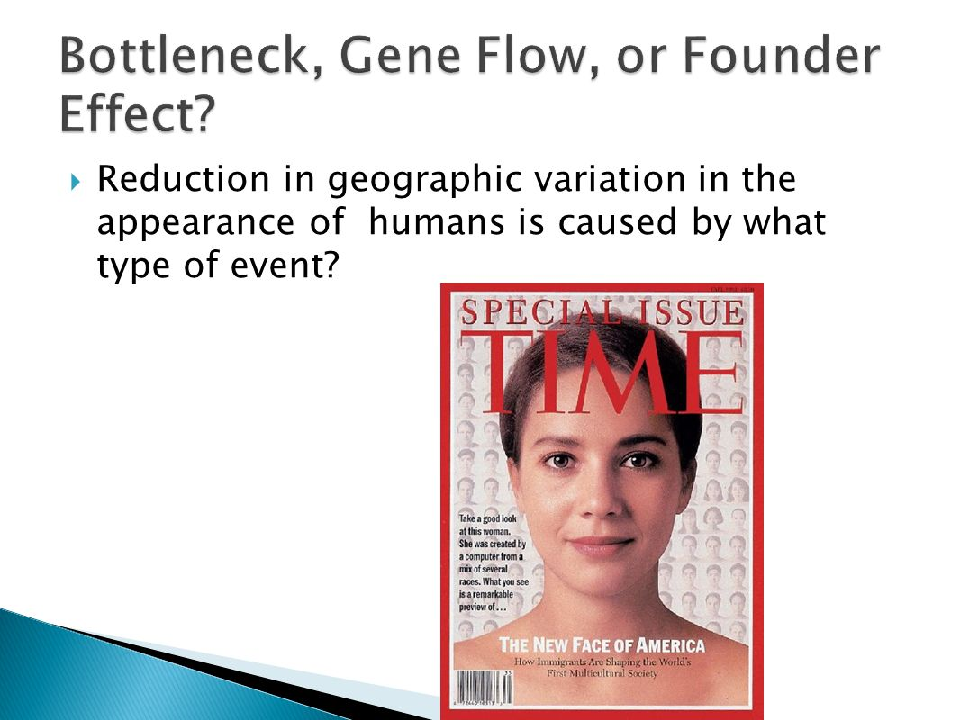 Bottleneck, Gene Flow, or Founder Effect