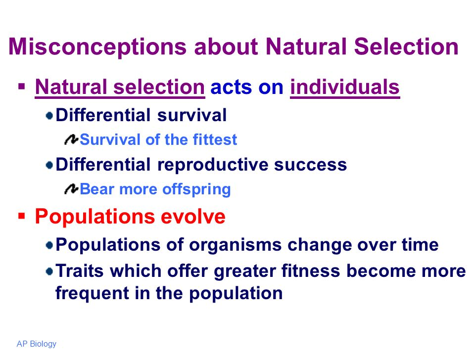 Common Misconceptions About Evolution And Natural Selection