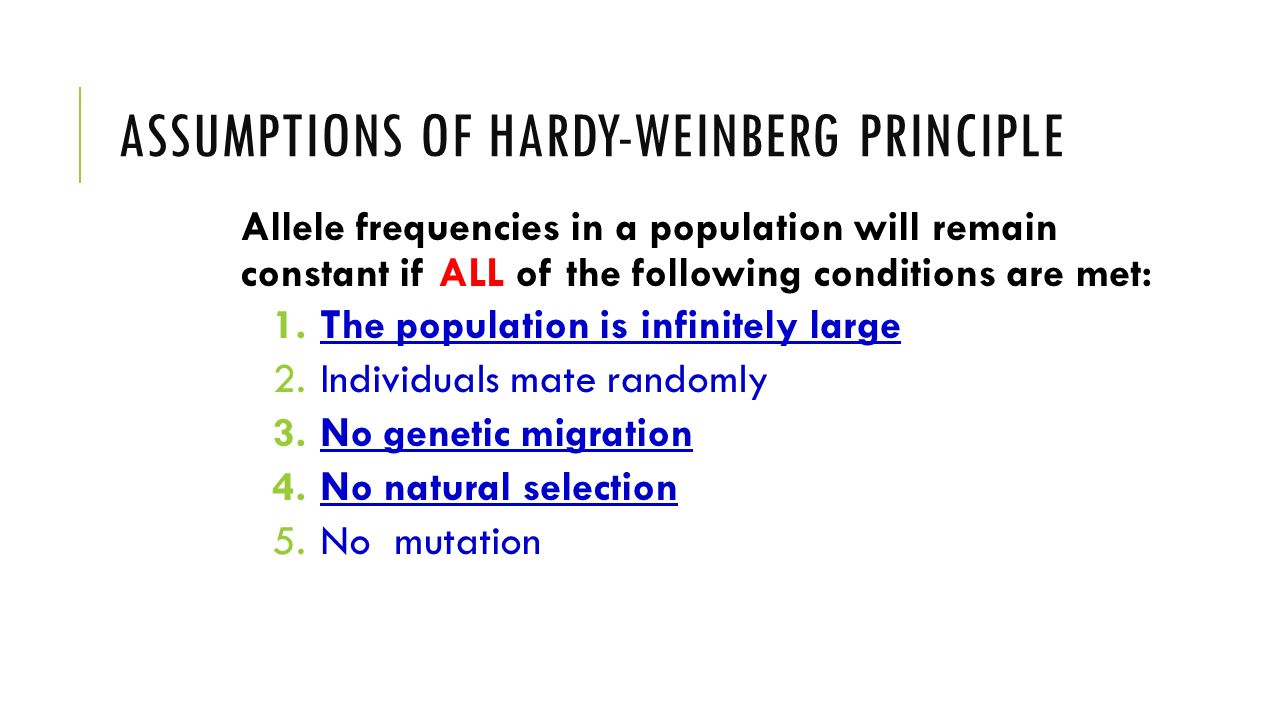 Assumptions of Hardy-Weinberg principle