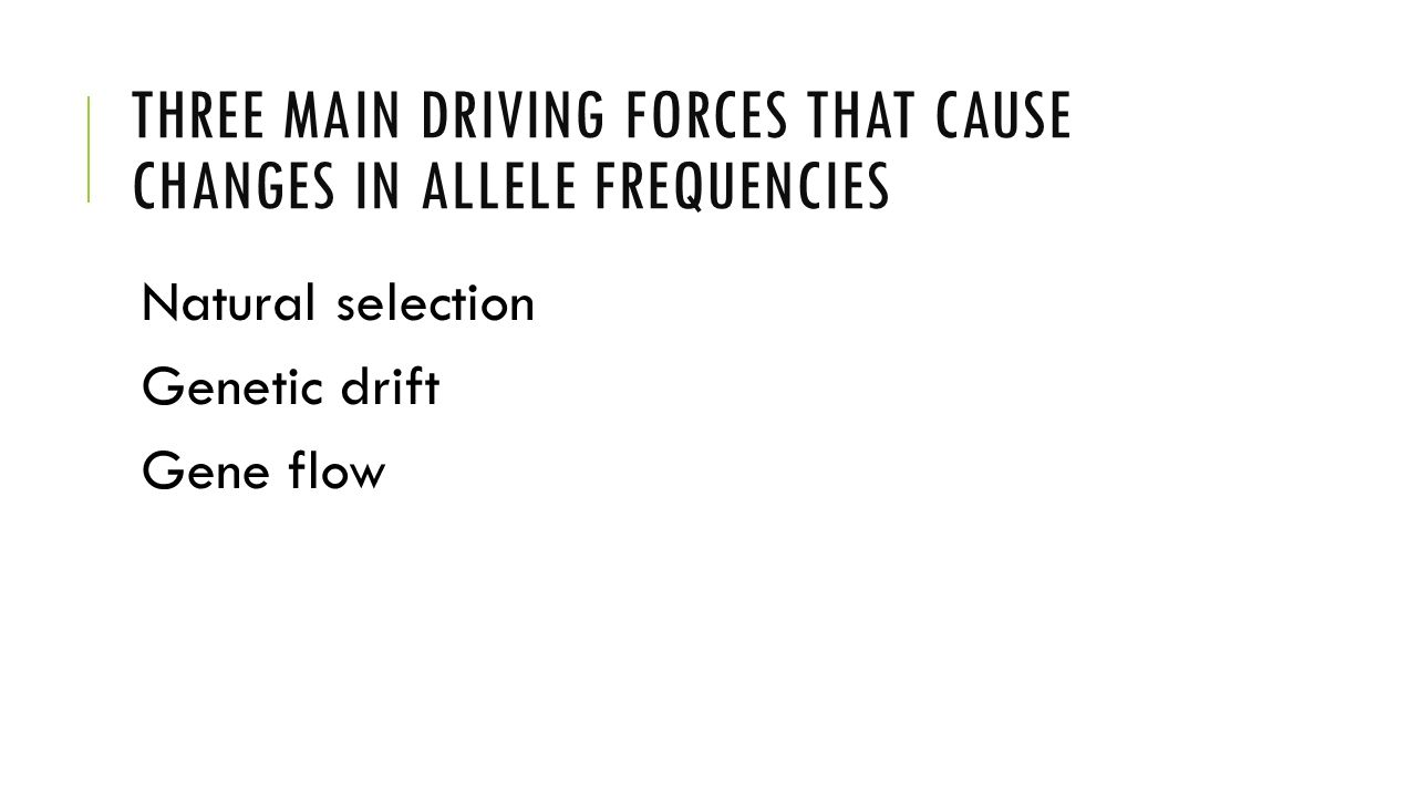 Three main driving forces that cause changes in allele frequencies
