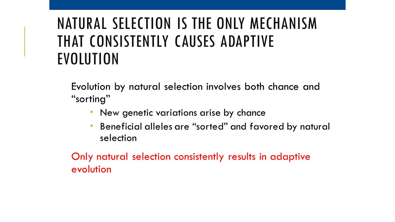 Natural selection is the only mechanism that consistently causes adaptive evolution
