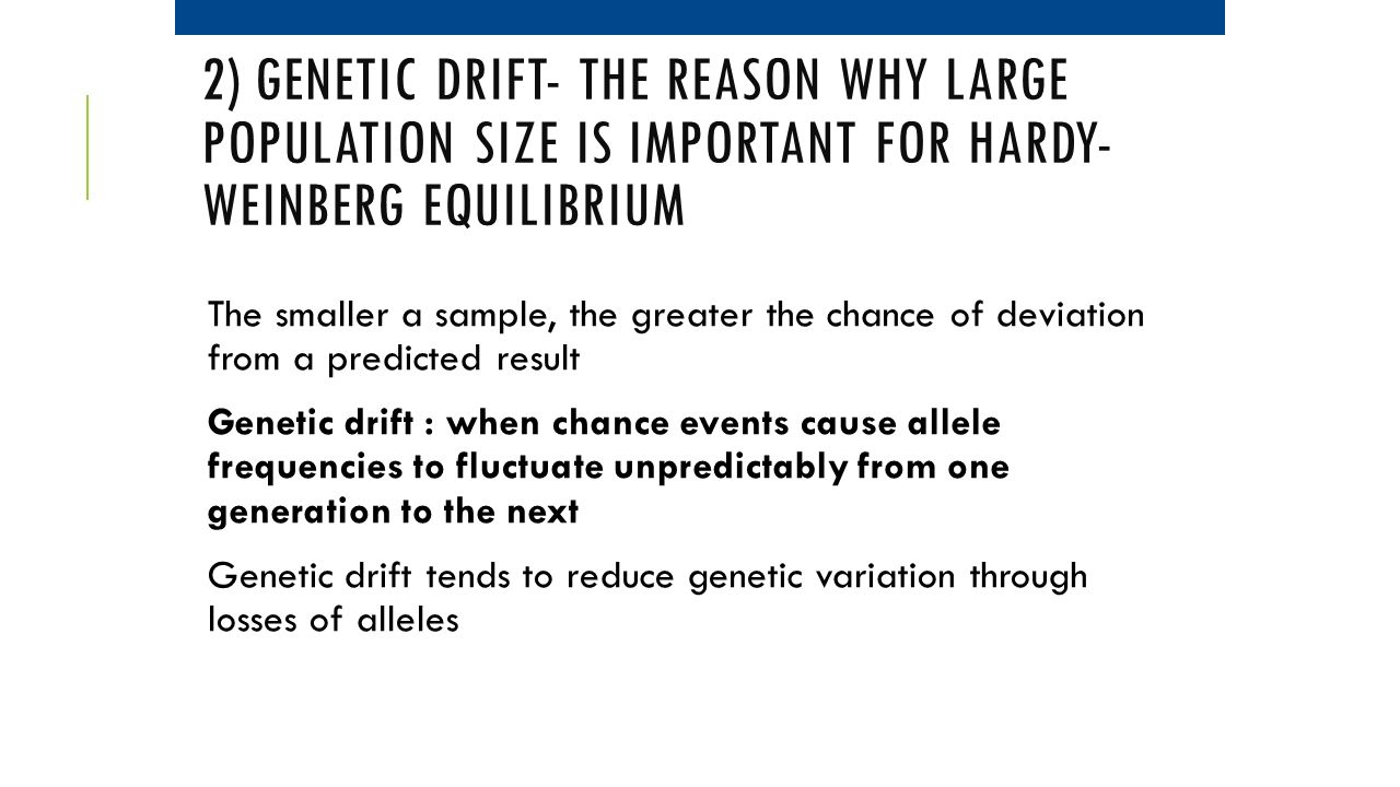 2) Genetic Drift- the reason why large population size is important for Hardy-Weinberg Equilibrium