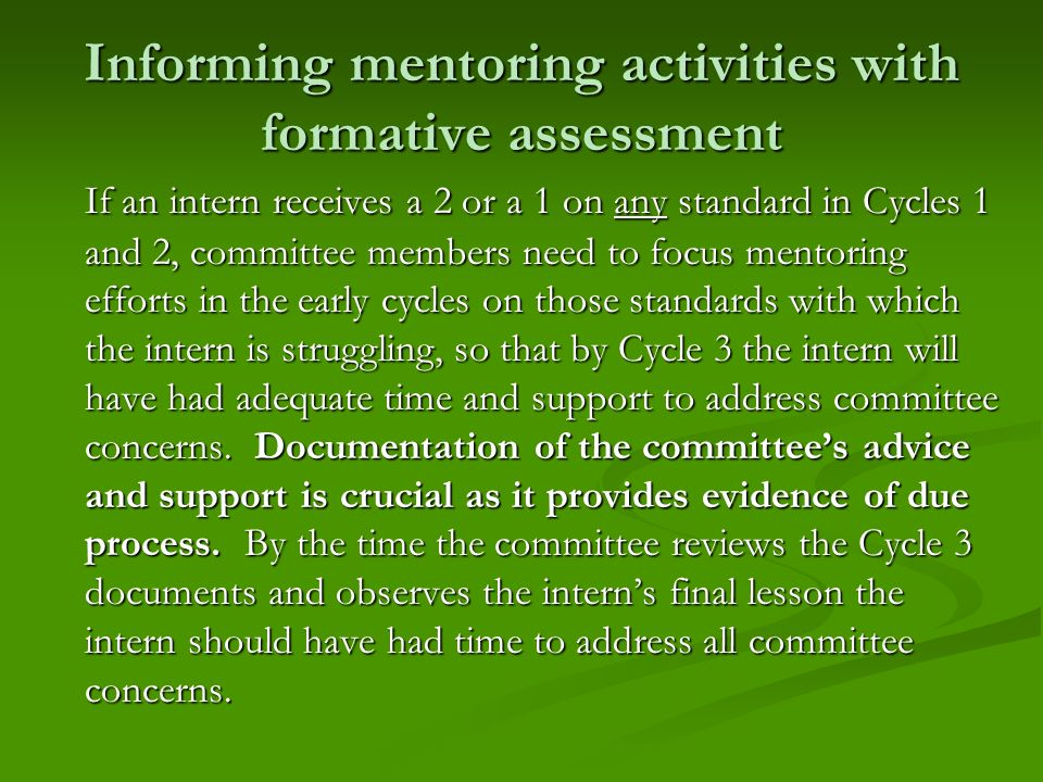 Informing mentoring activities with formative assessment
