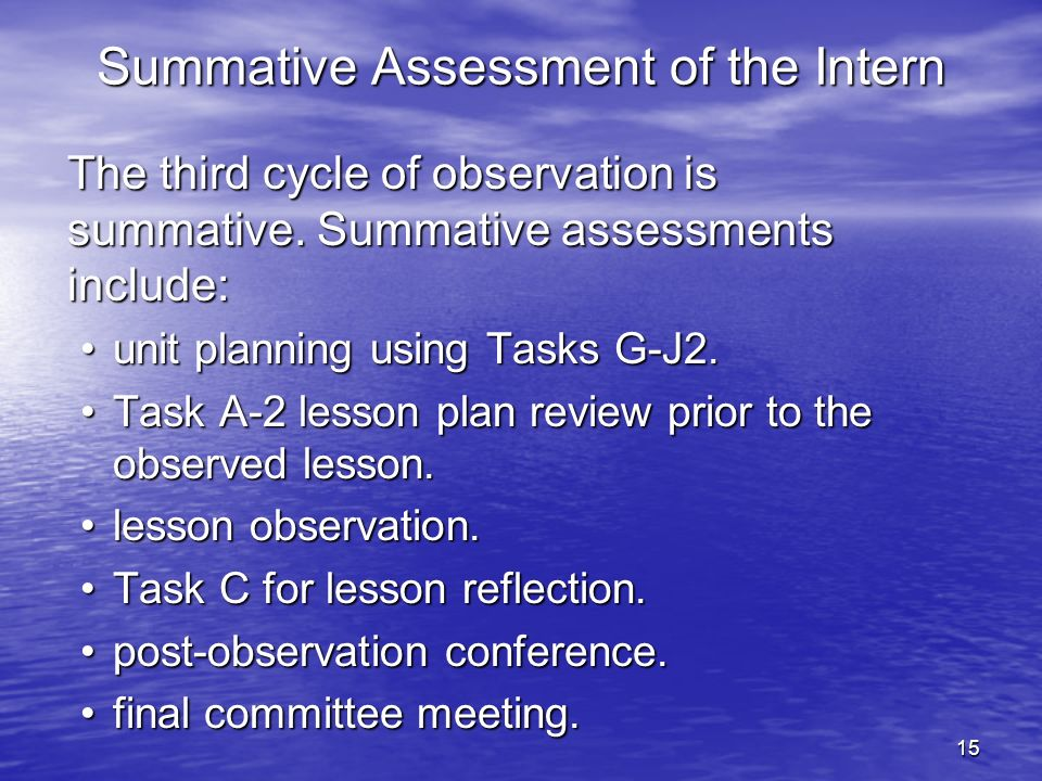 Summative Assessment of the Intern