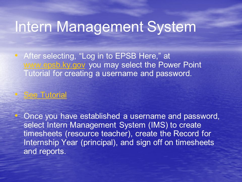Intern Management System