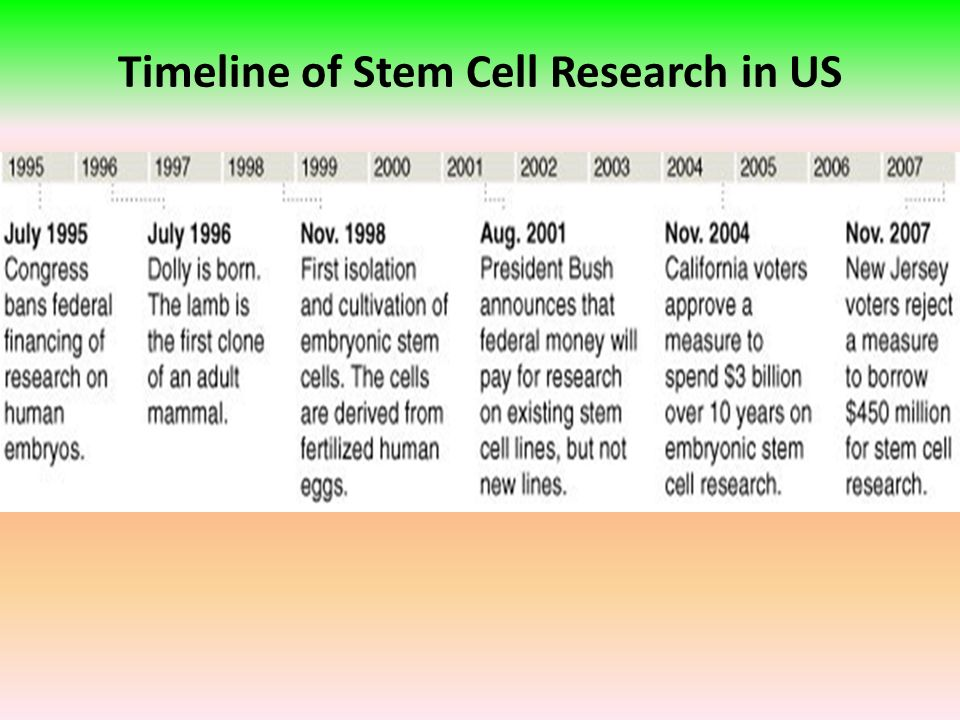 timeline of stem cell research A summary timeline of research that led to the discovery and application of  human embryonic stem cells timeline as shorter print version.