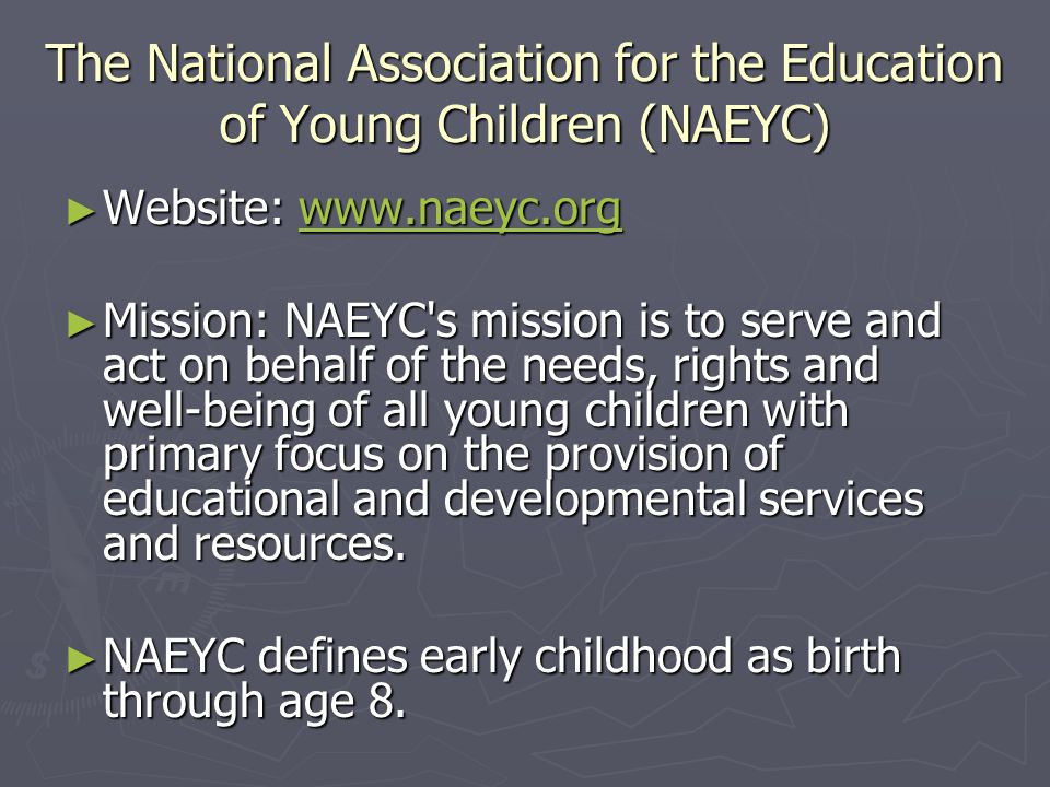 The National Association for the Education of Young Children (NAEYC)