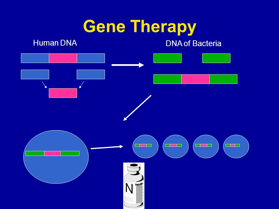 Gene Therapy Human DNA DNA of Bacteria
