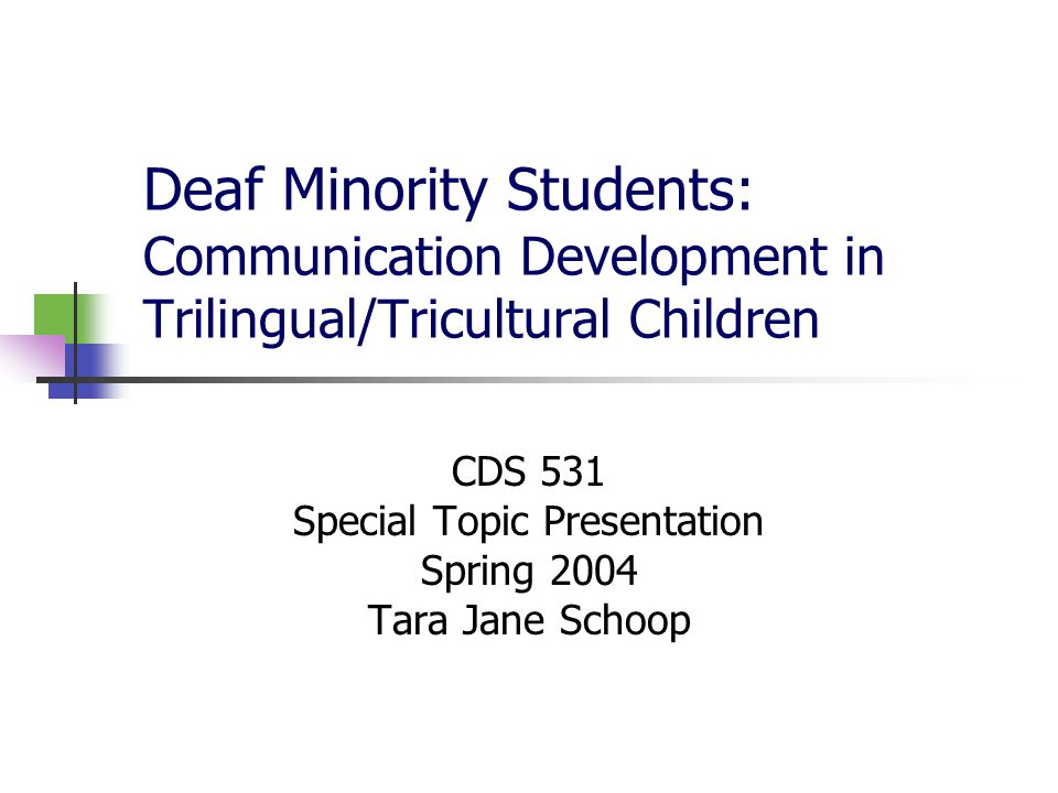 CDS 531 Special Topic Presentation Spring 2004 Tara Jane Schoop