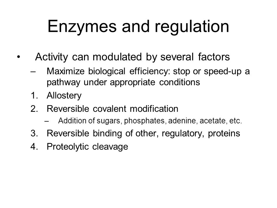 Enzymes and regulation