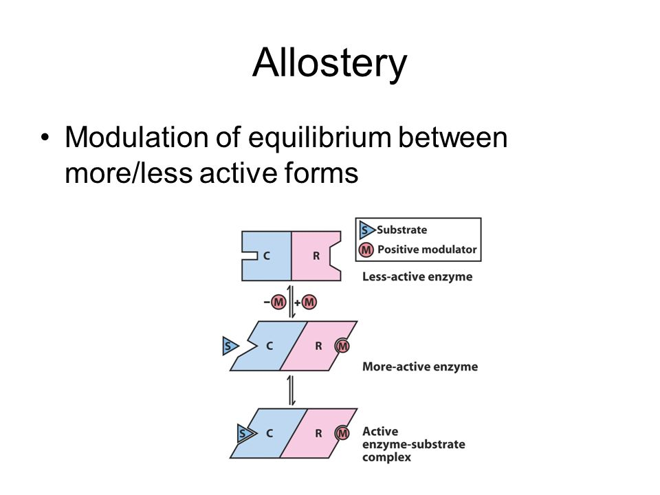 Allostery Modulation of equilibrium between more/less active forms