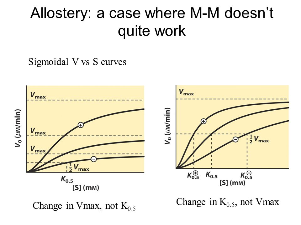 Allostery: a case where M-M doesn't quite work