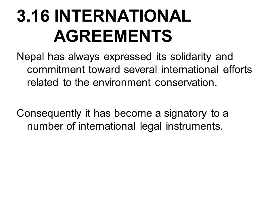 3.16 INTERNATIONAL AGREEMENTS