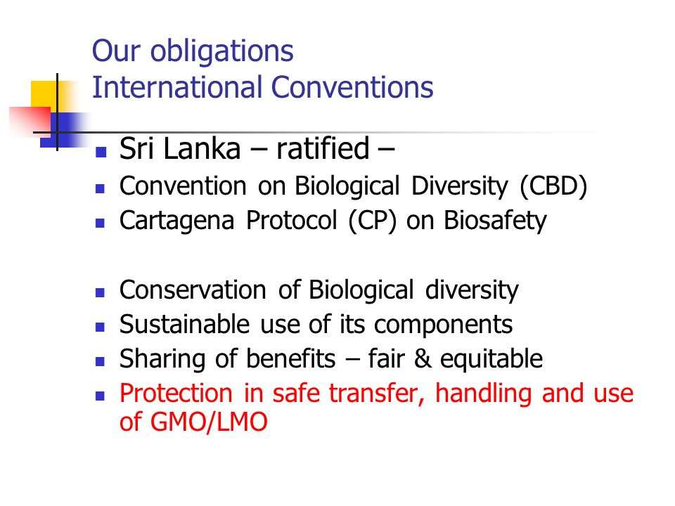 Our obligations International Conventions