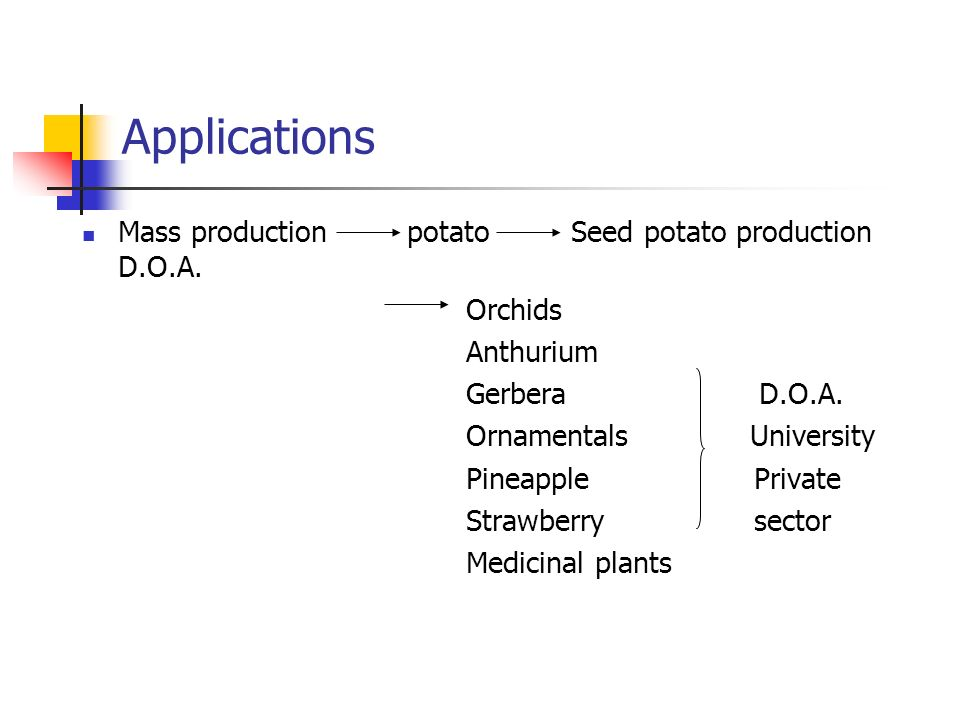 Applications Mass production potato Seed potato production D.O.A.