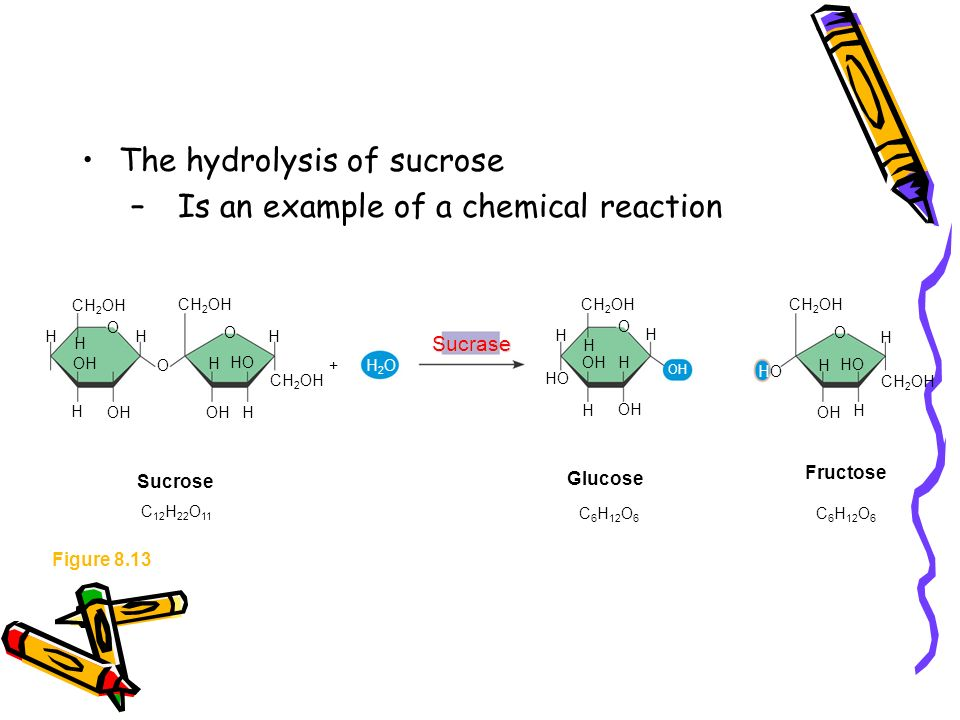 hydrolysis of sucrose Sucrose is dextrorotatory, but the resulting mixture of glucose and fructose is   hydrolysis of sucrose into single sugars is necessary before the sugars can be.