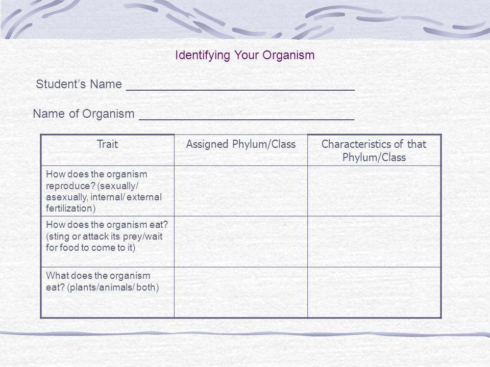 Identifying Your Organism
