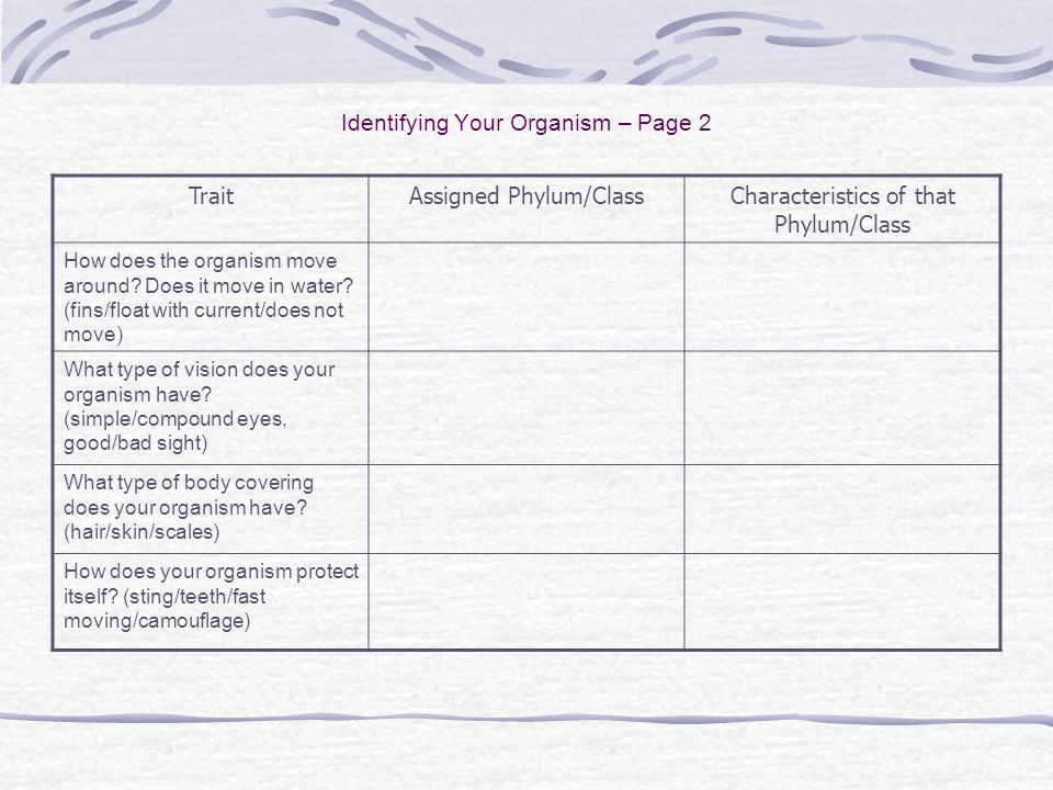 Identifying Your Organism – Page 2