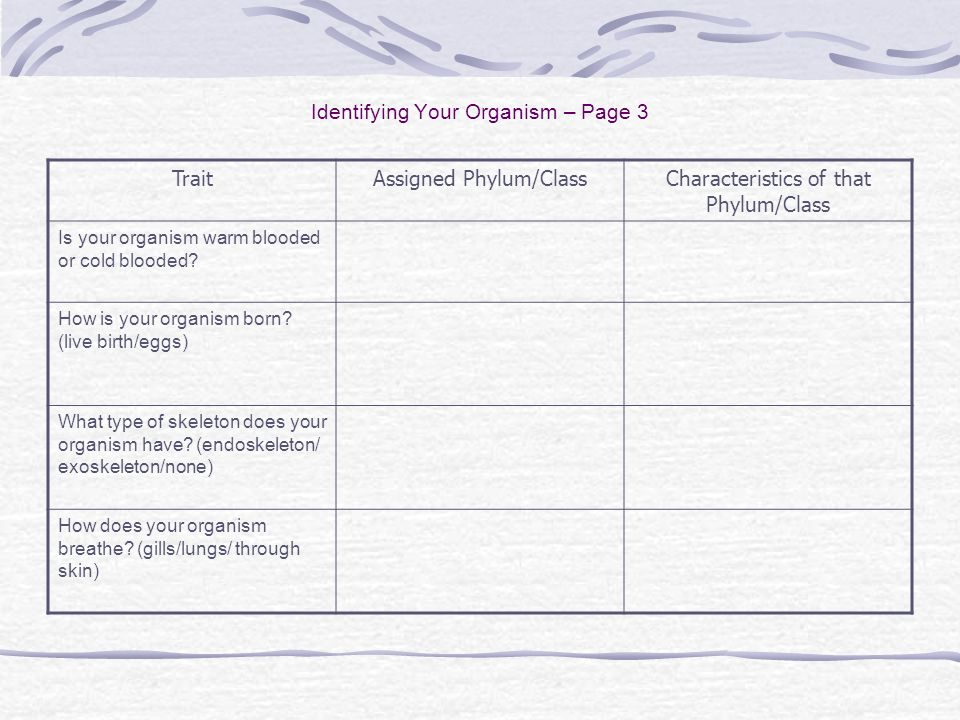 Identifying Your Organism – Page 3