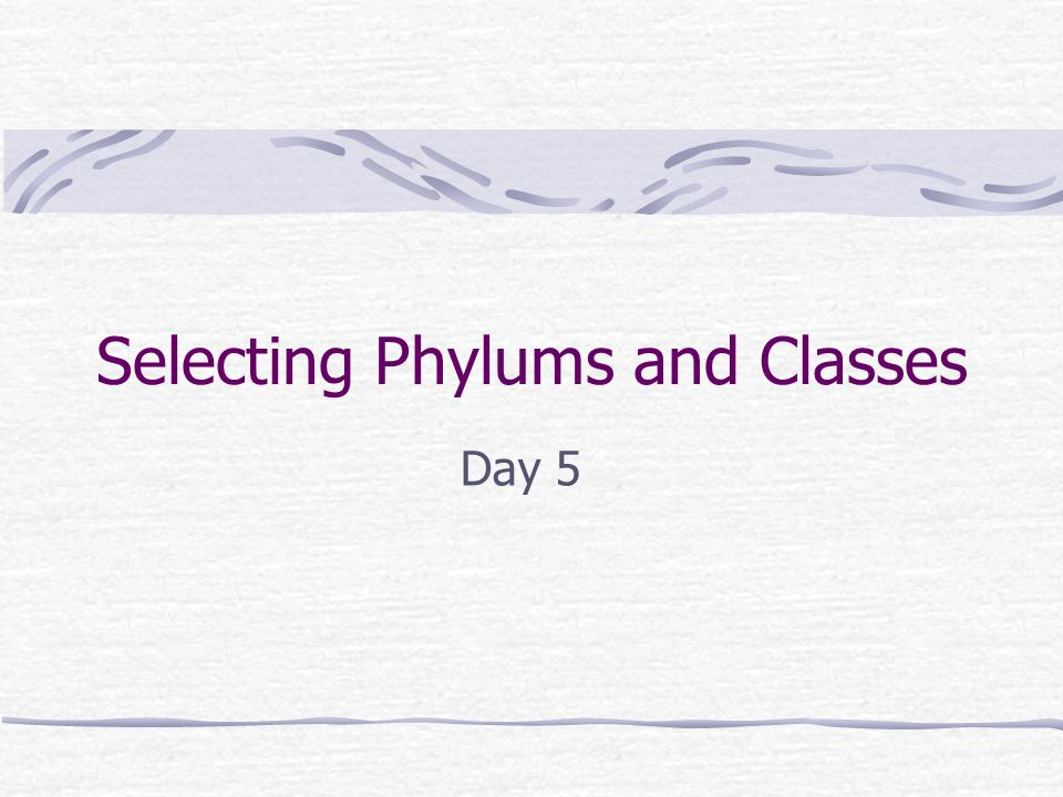 Selecting Phylums and Classes
