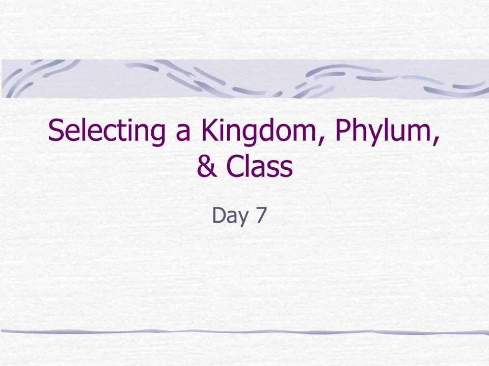 Selecting a Kingdom, Phylum, & Class