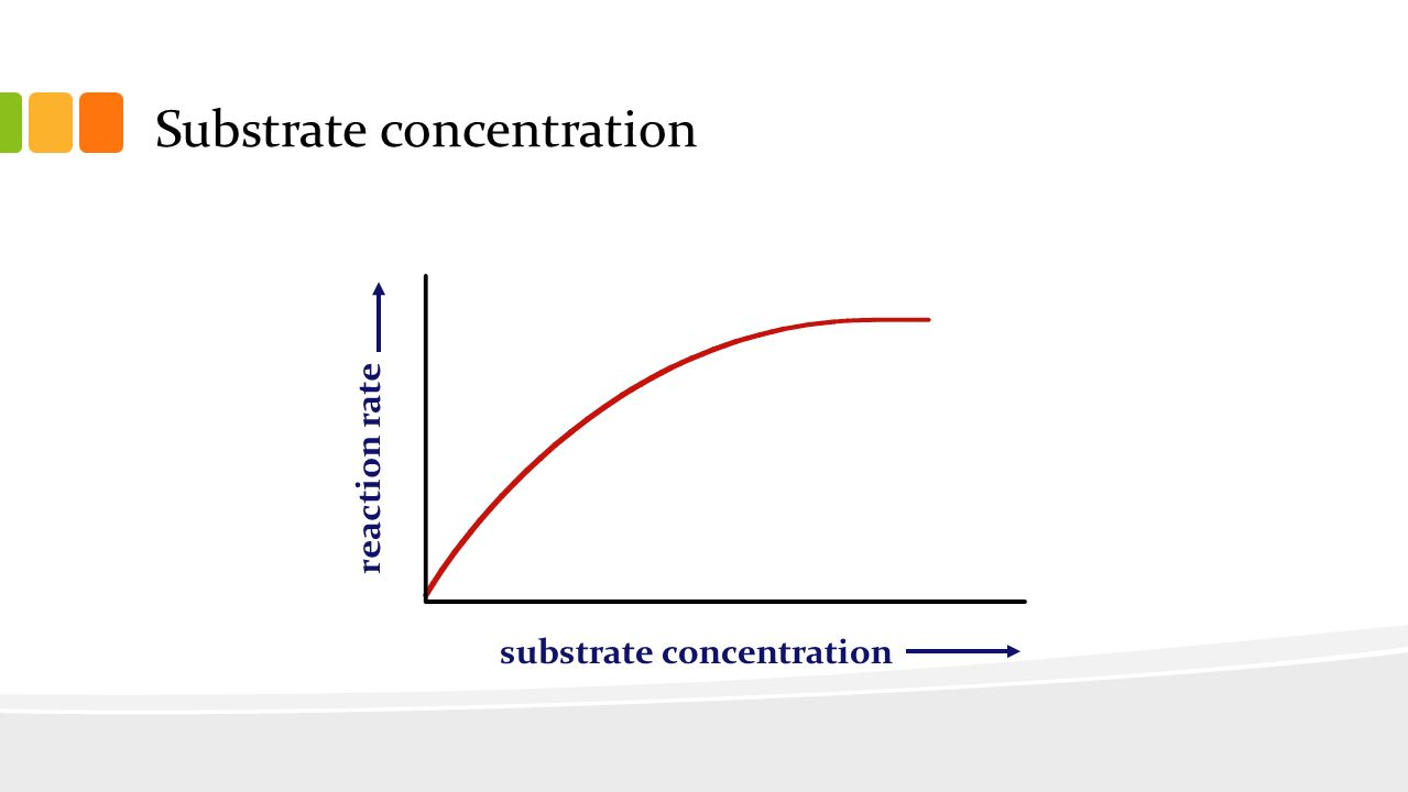 enzyme concentration Enzyme kinetics: velocity   m is also the substrate concentration at which the enzyme operates at one half of its maximum velocity k m = [s] at ½ v max .