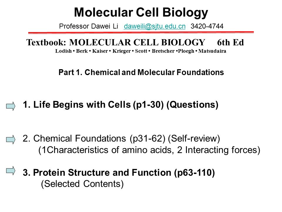 molecular biology of the cell textbook pdf