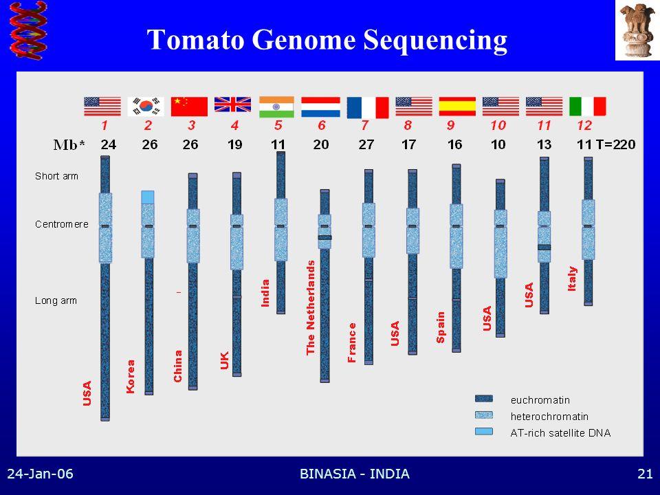 Tomato Genome Sequencing