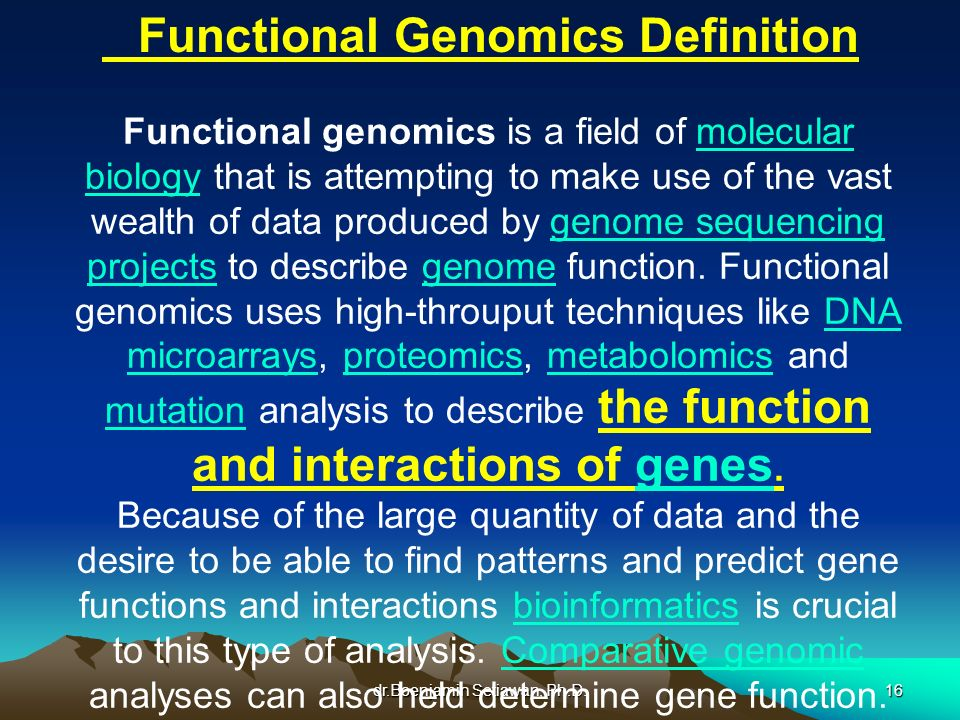 Functional Genomics Definition