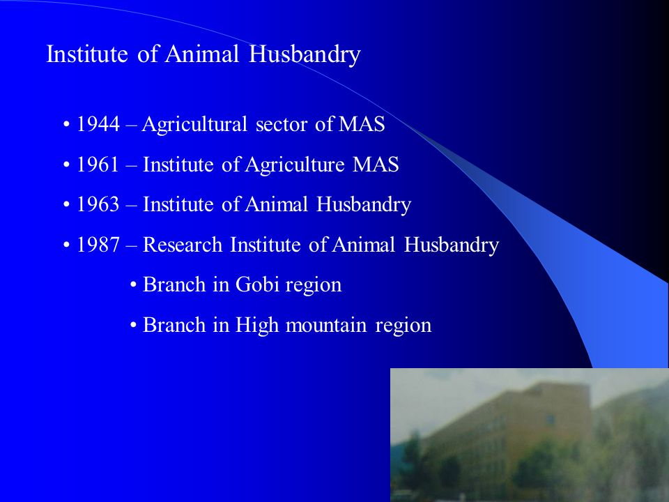 Institute of Animal Husbandry