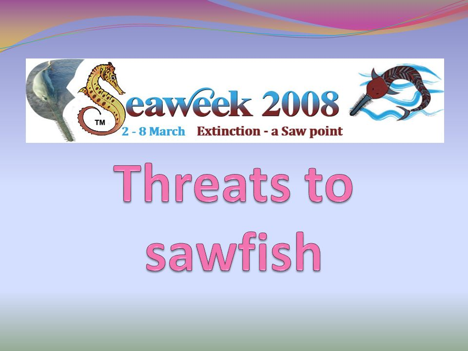 Threats to sawfish