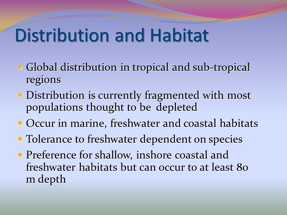 Distribution and Habitat