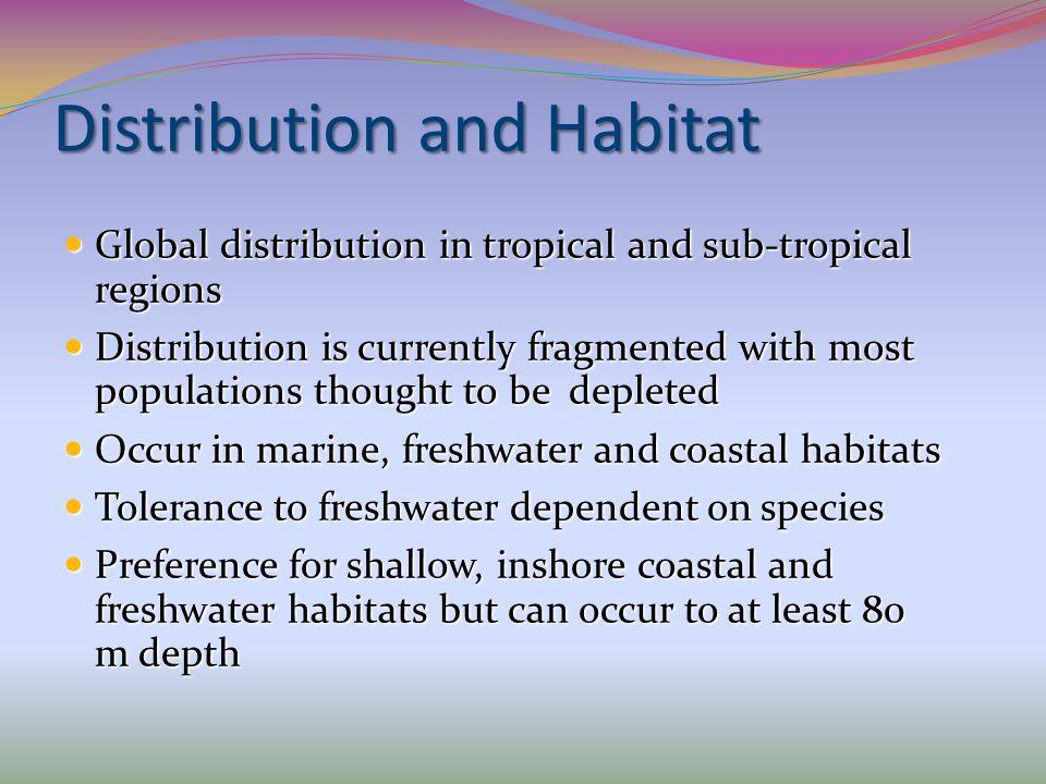 Distribution and Habitat