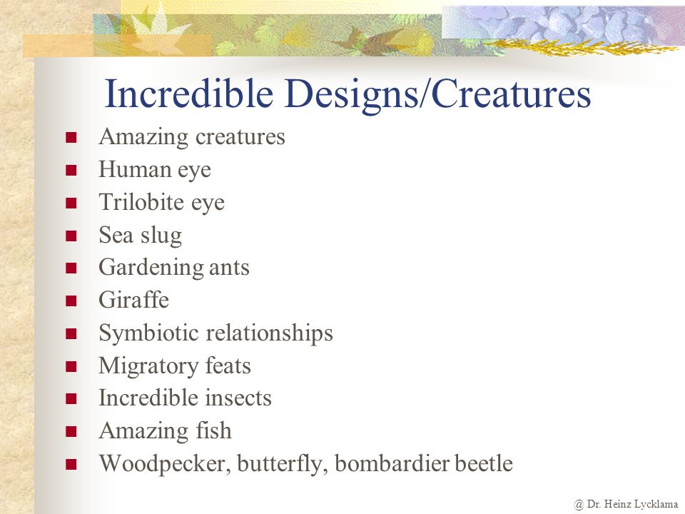 Incredible Designs/Creatures