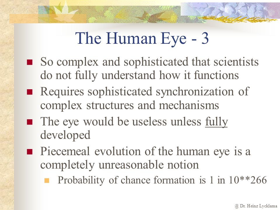 The Human Eye - 3 So complex and sophisticated that scientists do not fully understand how it functions.