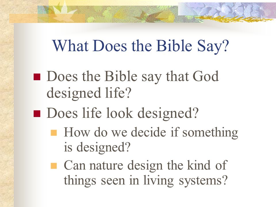 What Does the Bible Say Does the Bible say that God designed life