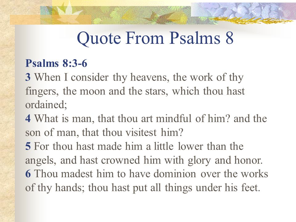 Quote From Psalms 8 Psalms 8:3-6