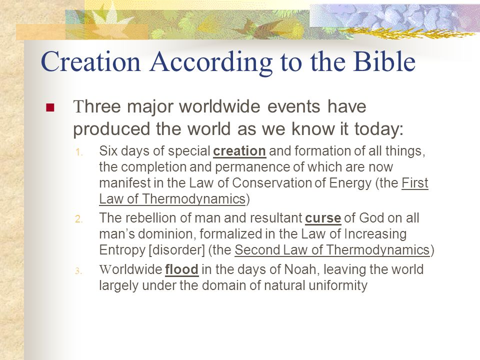 Creation According to the Bible