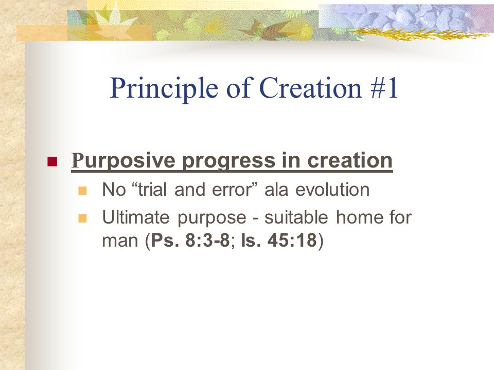 Principle of Creation #1