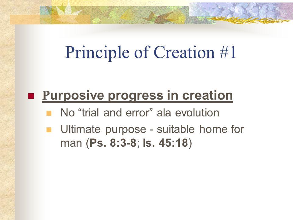 Principle of Creation #1