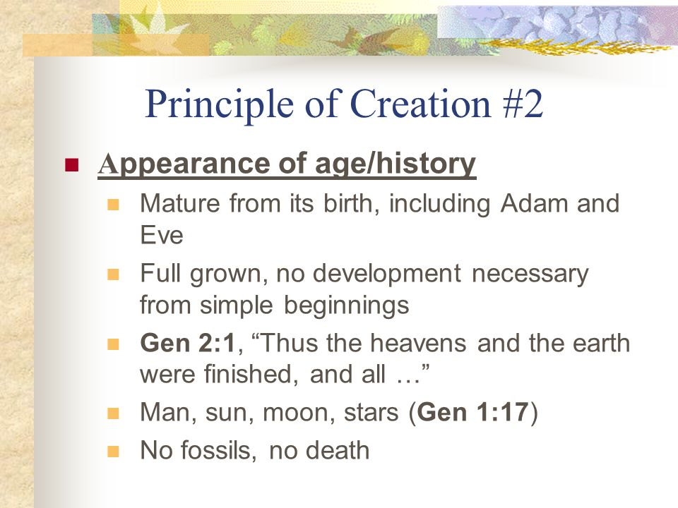 Principle of Creation #2
