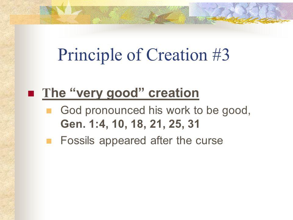 Principle of Creation #3