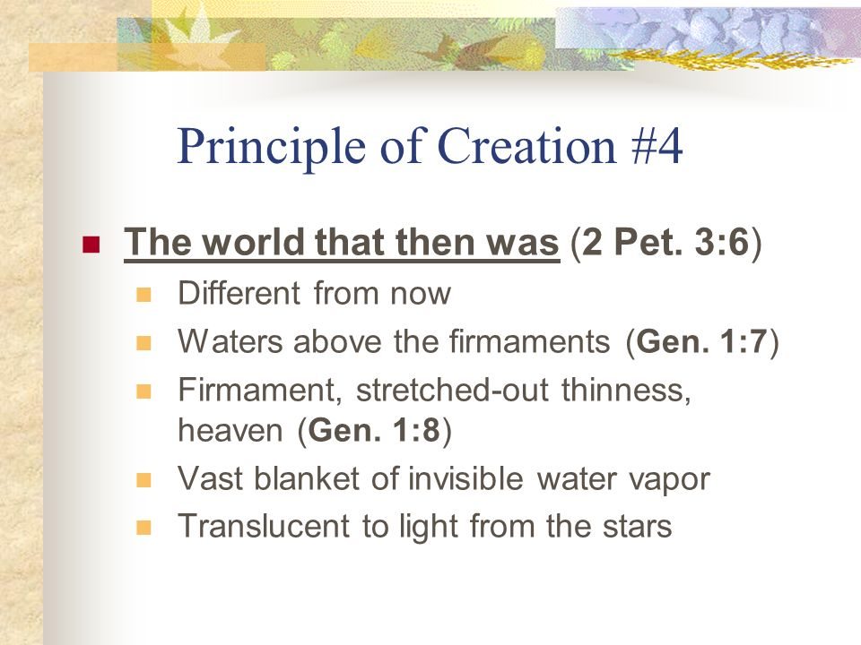 Principle of Creation #4