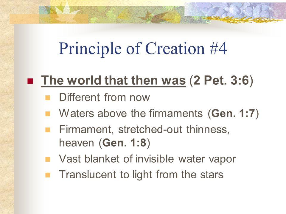 Principle of Creation #4