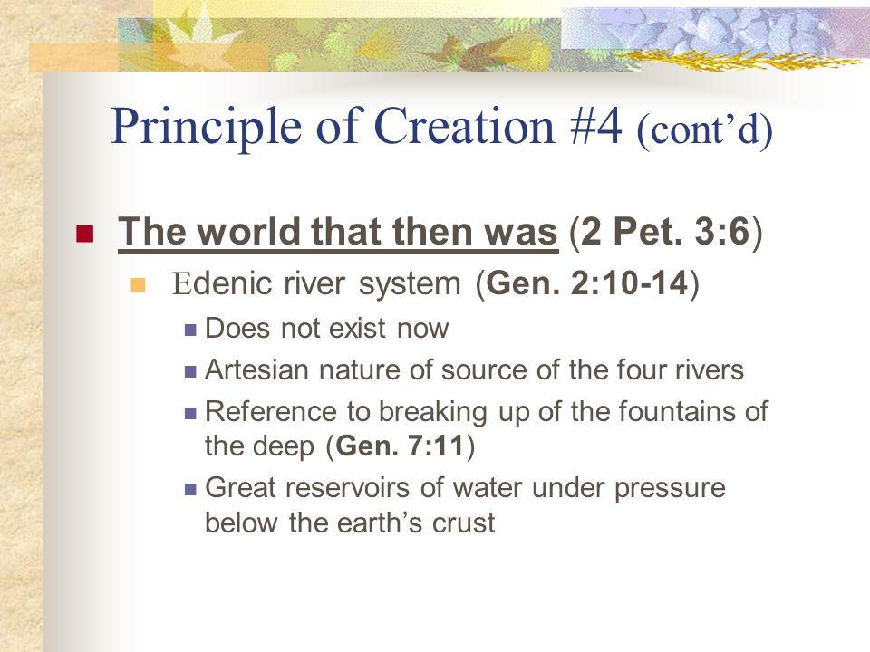 Principle of Creation #4 (cont'd)