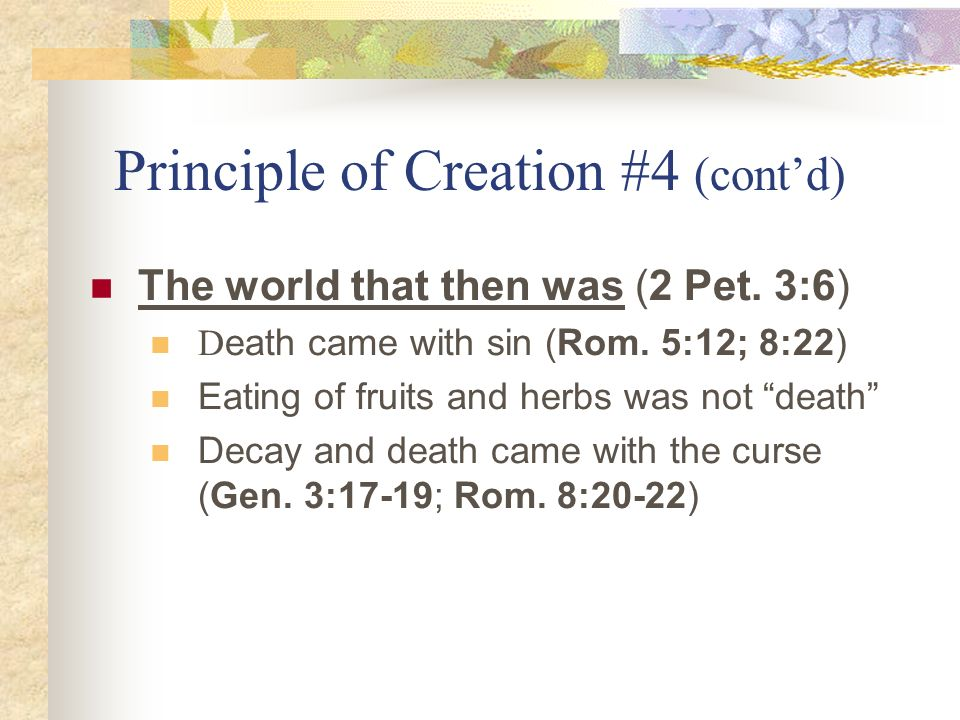 Principle of Creation #4 (cont'd)