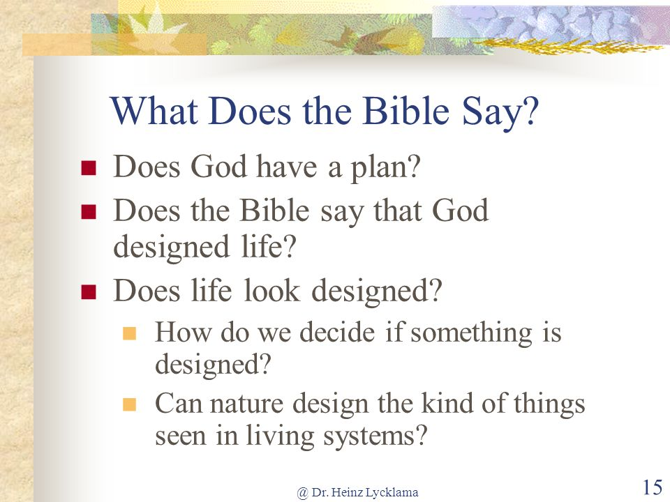 What Does the Bible Say Does God have a plan