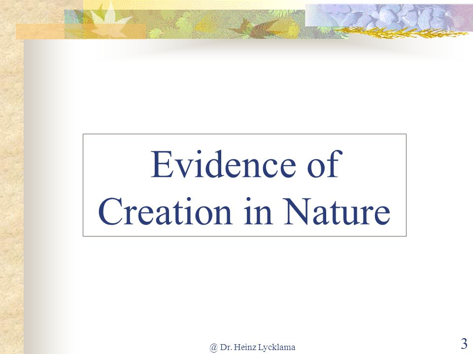 Evidence of Creation in Nature