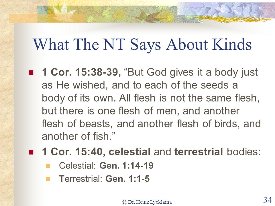 What The NT Says About Kinds