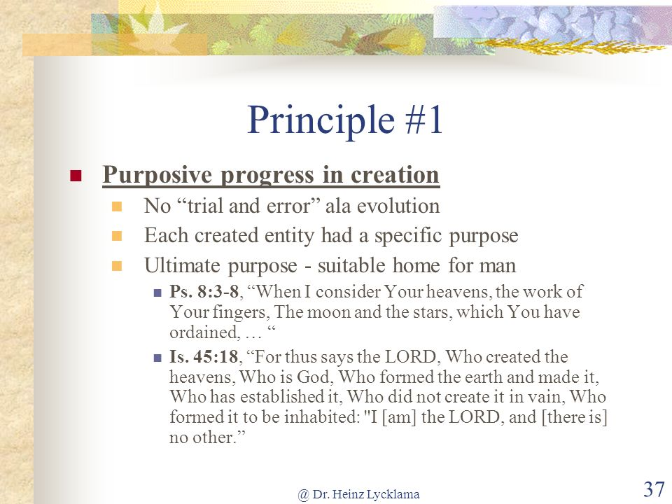 Principle #1 Purposive progress in creation